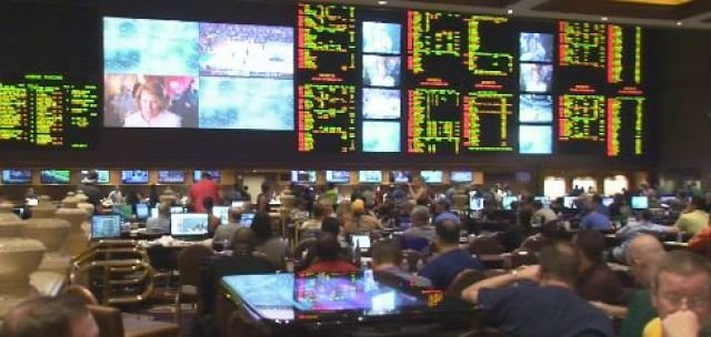 Majority sportsbook