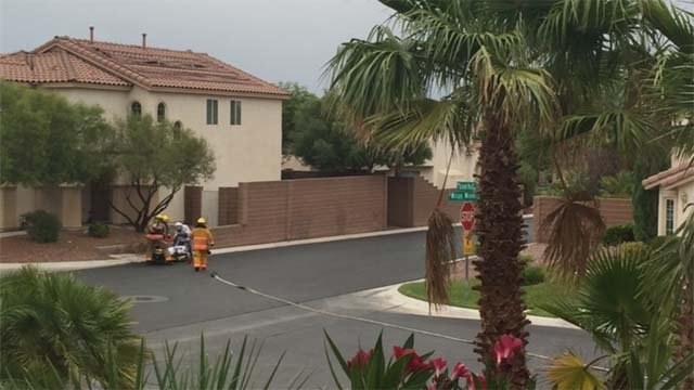 Firefighters attend to a man stung hundreds of times by bees on Friday, Aug, 5. (Source: FOX5)