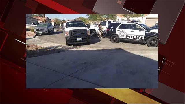 Metro police vehicles at a Las Vegas home where dogs were removed on Oct. 21, 2016. (Source: Facebook)