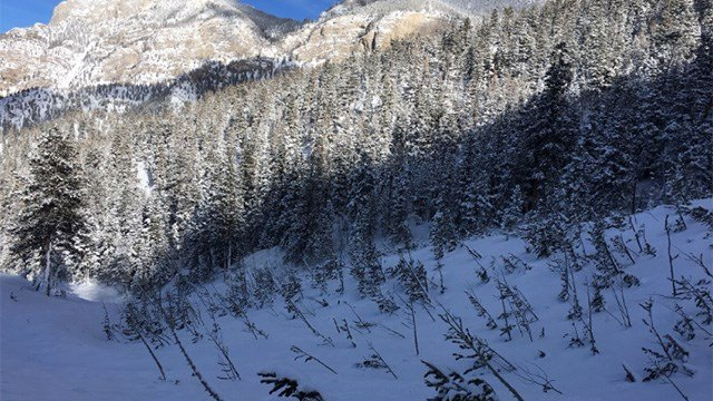 The risk of an avalanche prompted Clark County to issue a voluntary evacuation a Mt. Charleston. (Source: Clark County)