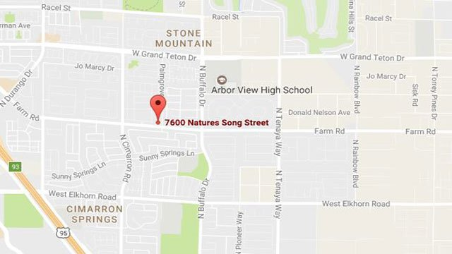 Metro attempts to make contact with the suspect at Nature's Song Street (Google Maps/FOX5).