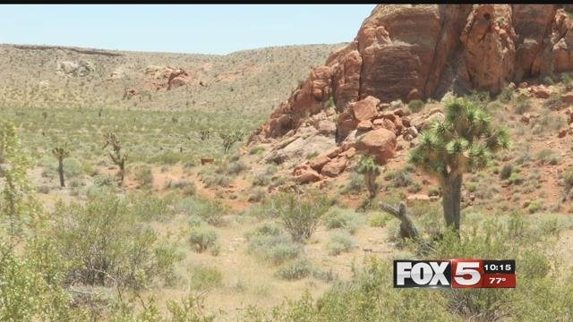 Gold Butte could lose its federal designation. (FOX5)