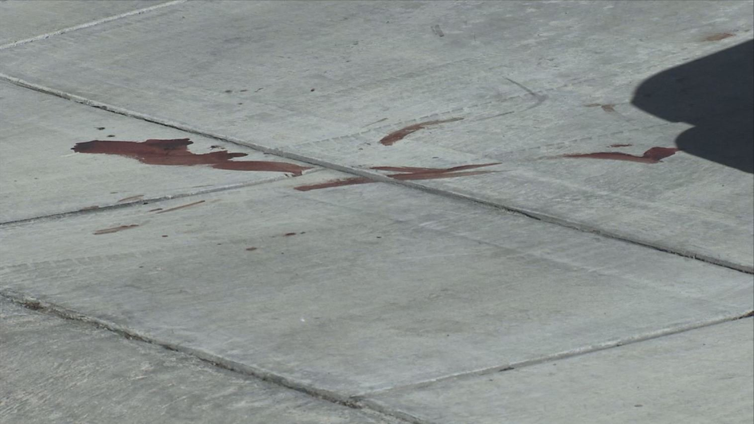 A blood stain is left on a driveway where a dog was shot to death on May 12, 2017. (FOX5)