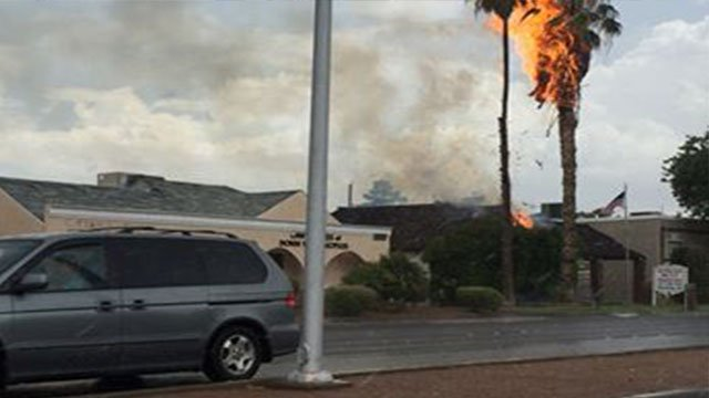 A palm tree and roof caught fire Friday. (Photo: Face Book Like Guy)