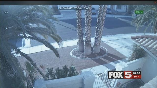 A still from a home camera that caught a thief stealing a pool cleaner (FOX5).
