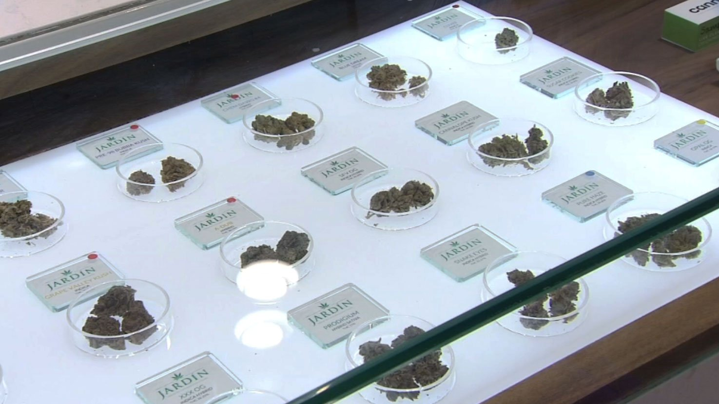 Marijuana is shown at Jardin Premium Cannabis. (FOX5)