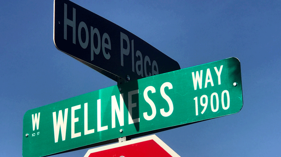A street at the intersection of Wellness Way and Hope Place is shown on Jan. 15, 2018. (Gai Phanalasy/FOX5)