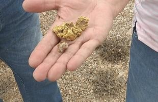 A local prospector shows off a 2.4 ounce gold nugget found during a trip