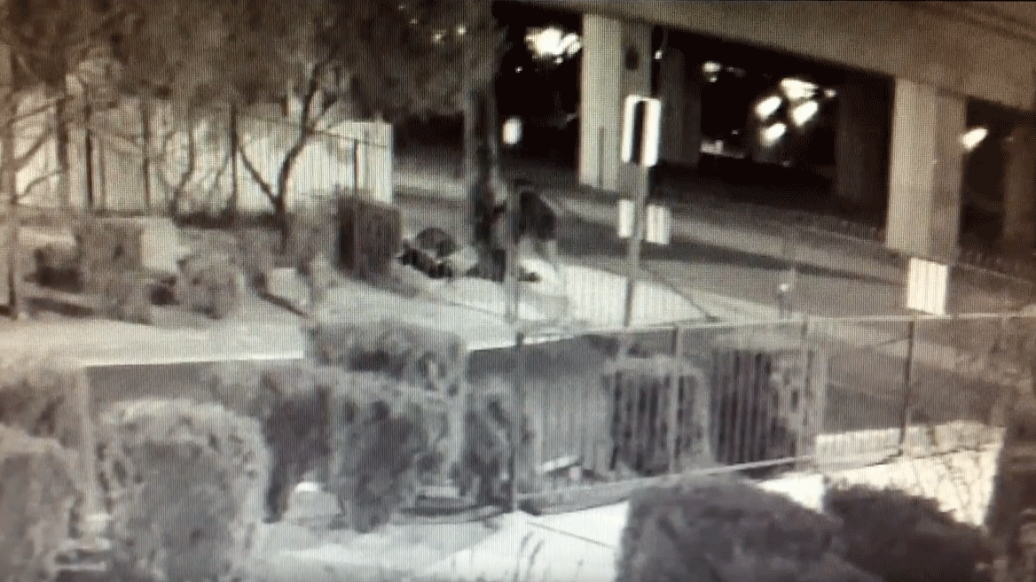 Las Vegas Metro police released surveillance of the shooting death of a homeless man. (Source: LVMPD)