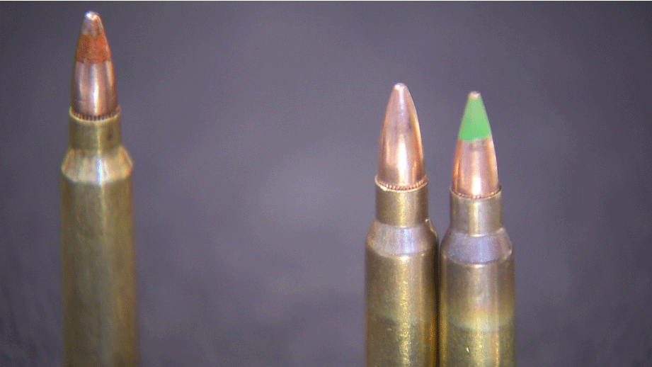 Ammunition is shown in an undated image. (File)