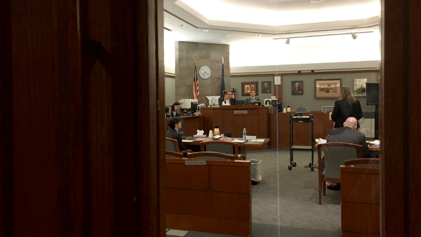 A Nevada judge listened to arguments in court on Feb. 9, 2018. (LasVegasCourts/Twitter)