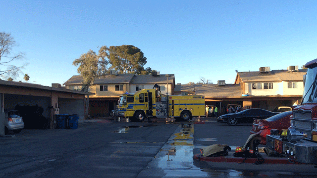 Several cats were killed in a townhouse fire on Feb. 16, 2018. (LasVegasFD/Twitter)