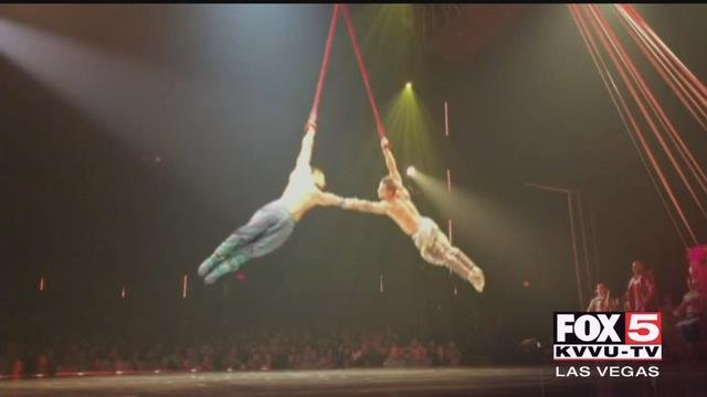 A Cirque du Soleil performer died Saturday night after he fell during a performance in Tampa, Florida.