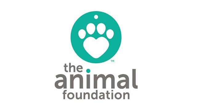 The Animal Foundation (Google).