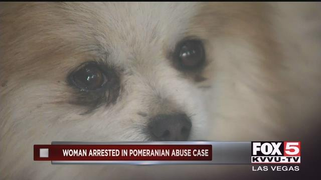 Suspects arrested in Pomeranian abuse case near Sandy Valley