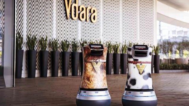 The robots exterior resembles the coats of different canine breeds, a hat-tip to the property's dog-friendly policy. (Source: MGM Resorts)