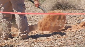 A member of RRSAR digs part of the desert in search for Keith Goldberg's remains
