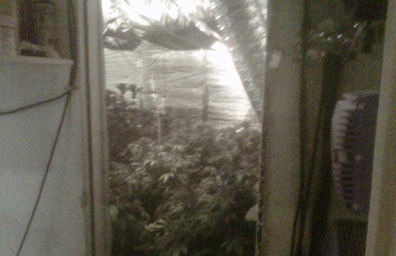 Metro photos show inside of marijuana grow house located at 8300 Fox Brook Court (LVMPD).