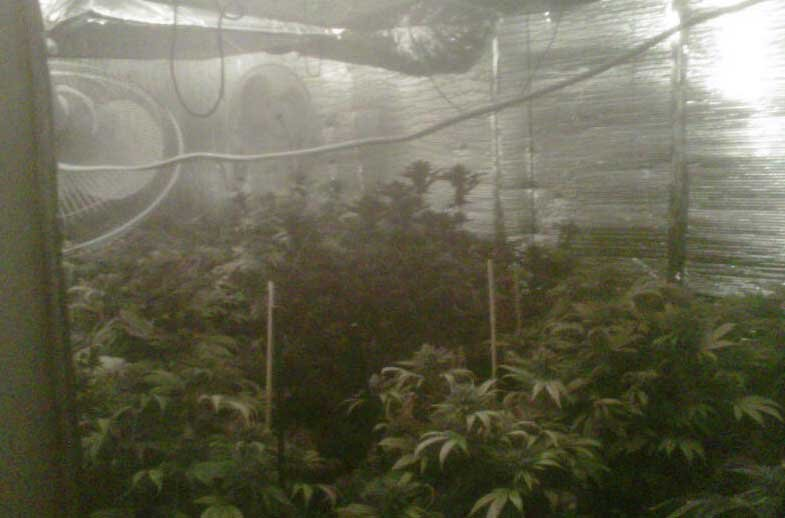 Metro photos show inside of marijuana grow house located at 8300 Fox Brook Court (LVMPD).