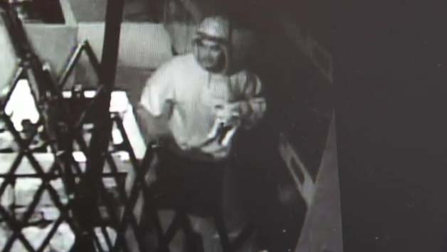 Surveillance still of the puppy burglary. (LVMPD)