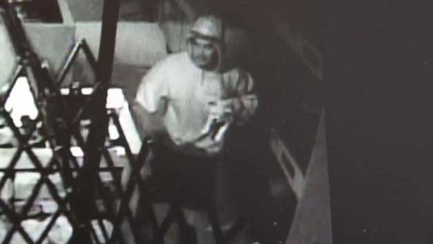 Surveillance still of the puppy burglary. (LVMPD)