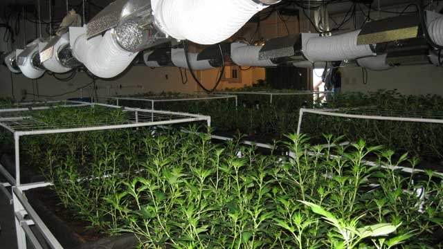 Deputies said a garage was used to set up a marijuana grow operation at a Golden Valley, AZ residence. (Mohave County Sheriff's Office)