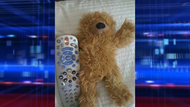 A teddy bear named Fuzzinator recently went missing. (Photo provided by Teresa Pyle)