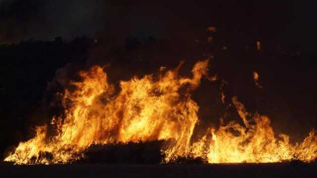 Flames from the Carpenter 1 wildfire engulf brush in the Spring Mountains. (Source: Inciweb.org)
