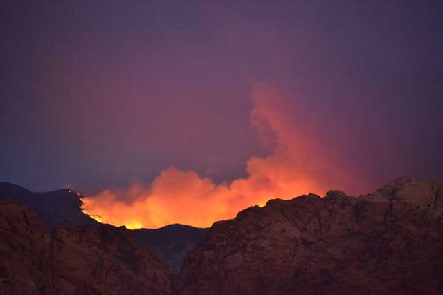 The Carpenter 1 fire on Mount Charleston was 43 percent contained as of Thursday evening. (Aaron Leifheit)