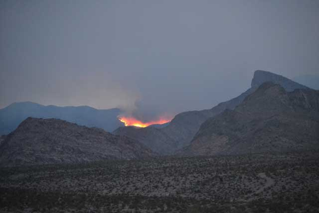 The Carpenter 1 wildfire on Mt. Charleston is 70 percent contained as of July 15. (Aaron Leifheit)