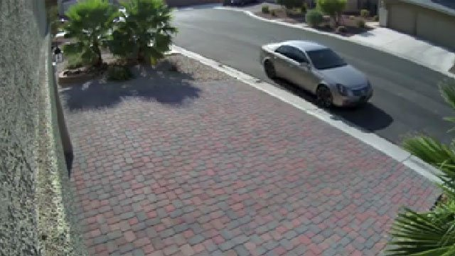 The video also showed the vehicle used by the suspect. (Ed Vidal/Facebook)