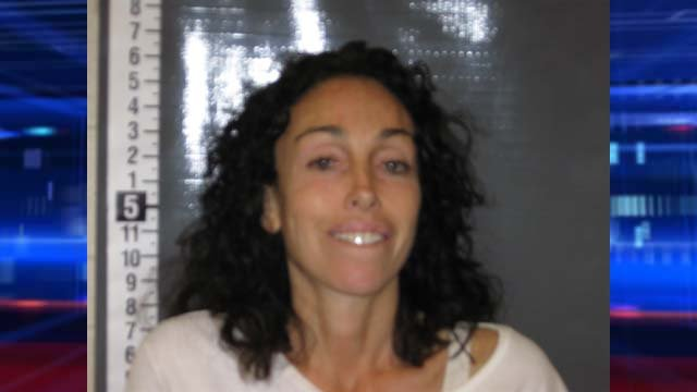 Heidi Fleiss' booking photo from Tuesday, Oct. 22. (Nye County Sheriff's Office)