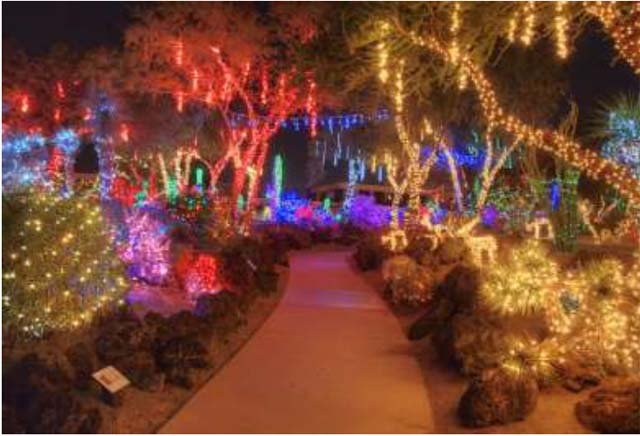 The three-acre Botanical Cactus Garden were lit by more than a half million colorful lights on Tuesday. (Ethel M Chocolate)