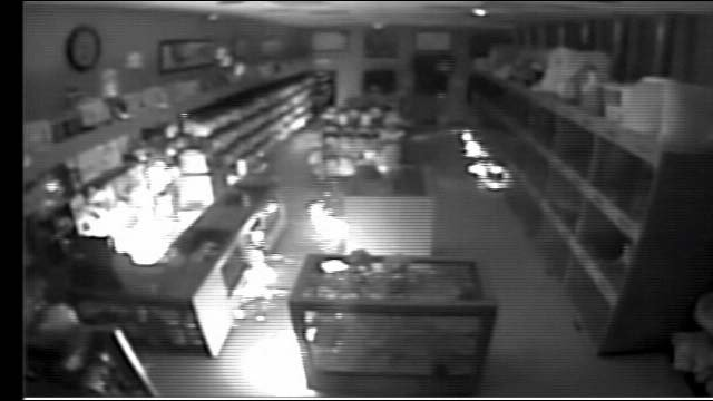 Surveillance still from a fire at the Prince and Princess Puppy and Boutique store on Jan. 27. (FOX5)