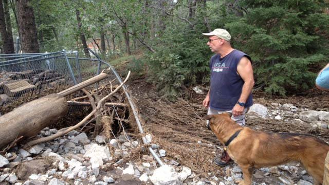 Mount Charleston resident Ron Erskine inspects a portion of his yard damaged by floodwaters. (Elizabeth Watts/FOX5)