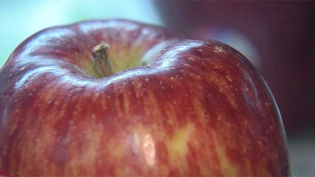 An apple is seen in this undated image. (File/FOX5)