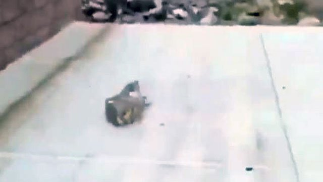 A video still shows the large rock that was used to kill the duckling (Twitter / FOX5).